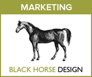 Black Horse Design Marketing (South Wales Horse)