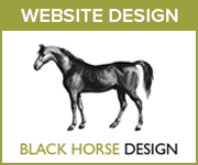 Black Horse Design Website Design (South Wales Horse)