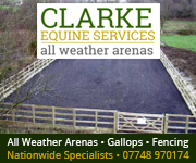 Clarke Equine Services  2018 (South Wales Horse)