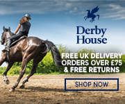 Derby House 2017 (South Wales Horse)