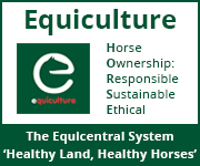 Equiculture 01 (South Wales Horse)