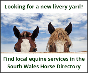 Livery Yards (South Wales Horse)