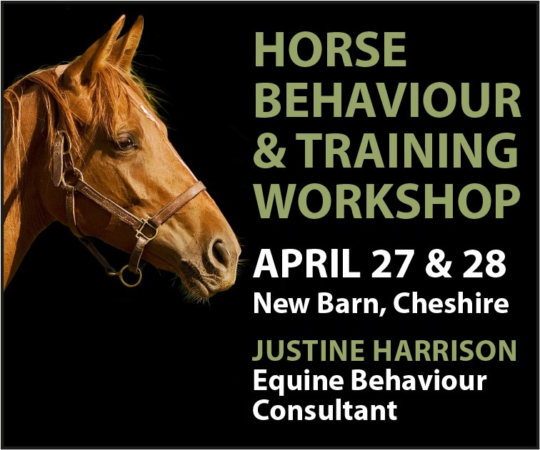 Justine Harrison Workshop April 2019 (South Wales Horse)