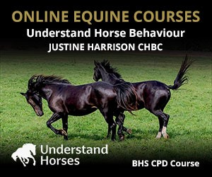UH - Understand Horse Behaviour (South Wales Horse)